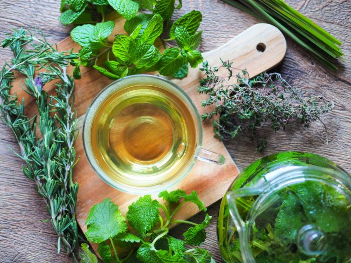 herbatki oczyszczające organizm z toksyn